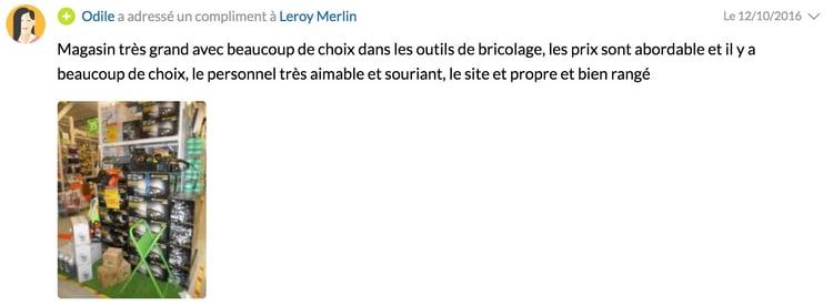 leroy-merlin-vourles.jpg